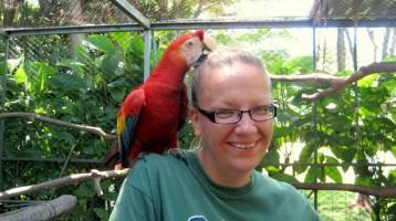 Papagei auf der Schulter
