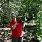 Erntehilfe auf der Papageien-Farm