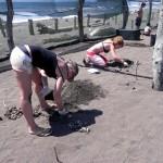 Exhumierung einiger Nester